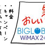 BIGLOBE WiMAXのキャンペーンと評判&おすすめしない3つの理由